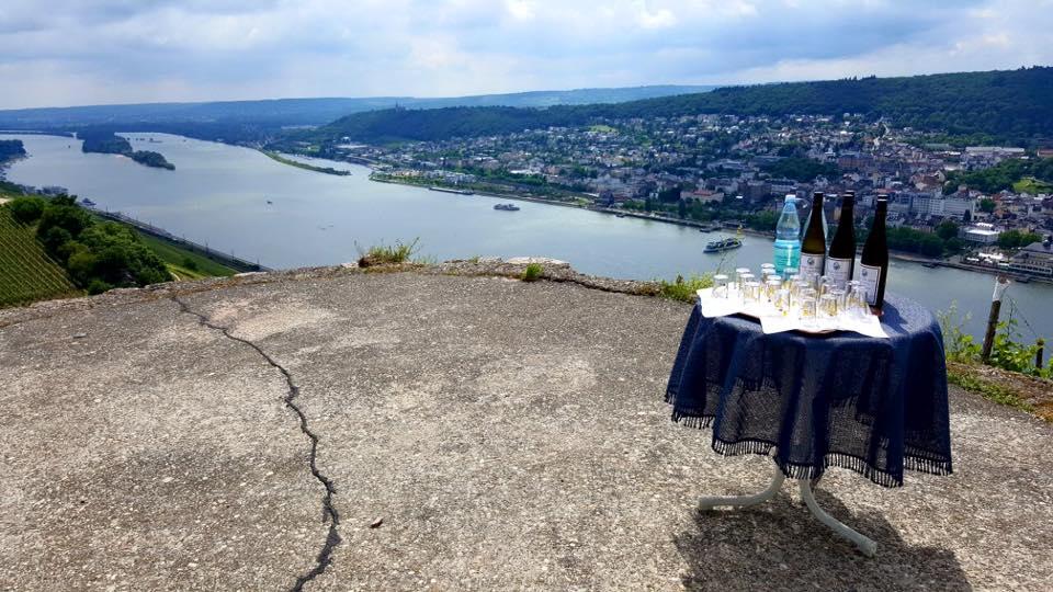 Weinprobe mit Ausblick auf den Rhein
